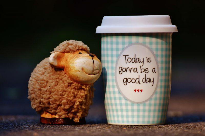 今日はいい日になるカップ
